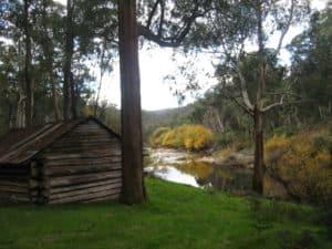 Night 2: Kennedys Hut & the Mitta Mitta River
