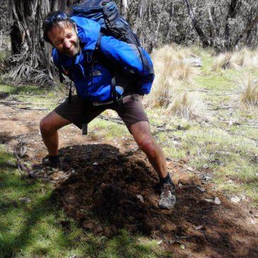 Buenba Hut Site to Cowombat Flat Carpark – AAWT