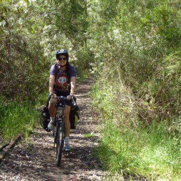 Camperdown to Timboon Rail Trail