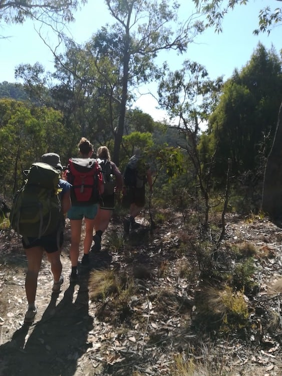 The Gang walking along a narrow trail.